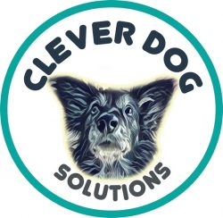 Clever Dog Solutions